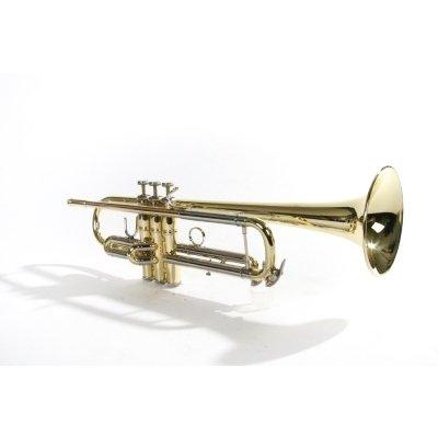 6010 - Tromba Sib