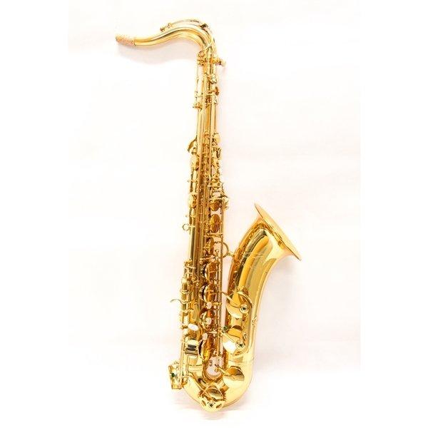 5040VFRGL-SS sax tenore ripa