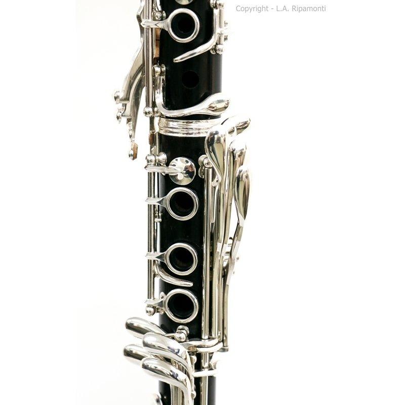 310Ripa-2