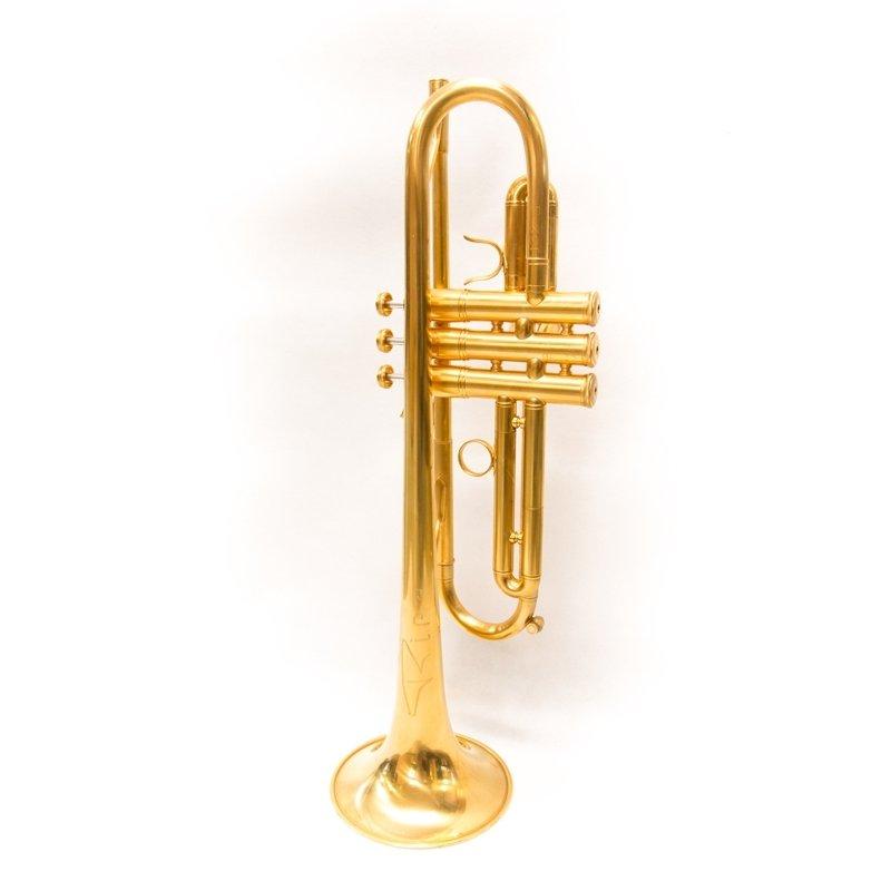 Tromba Ripa