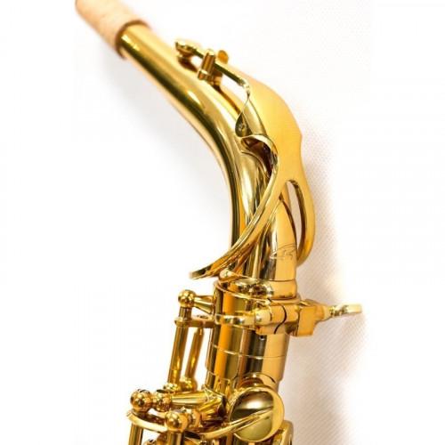 5030VFRGL-SS - Sax C.Alto Ripa laccato oro