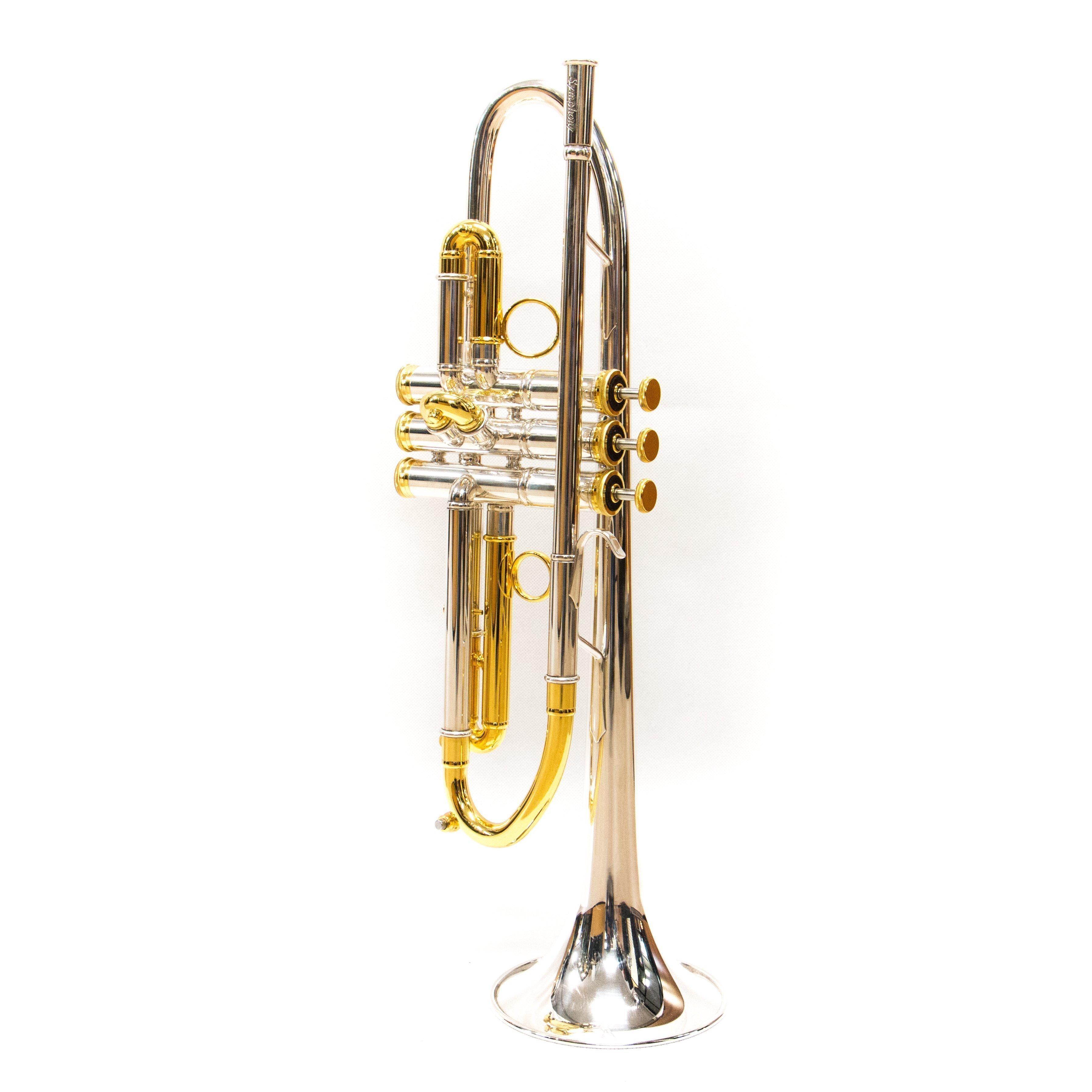 8000MLS-S/G tromba fides
