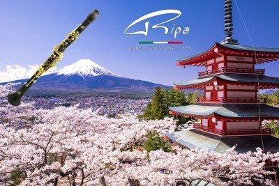 Giappone 2018 Ripa
